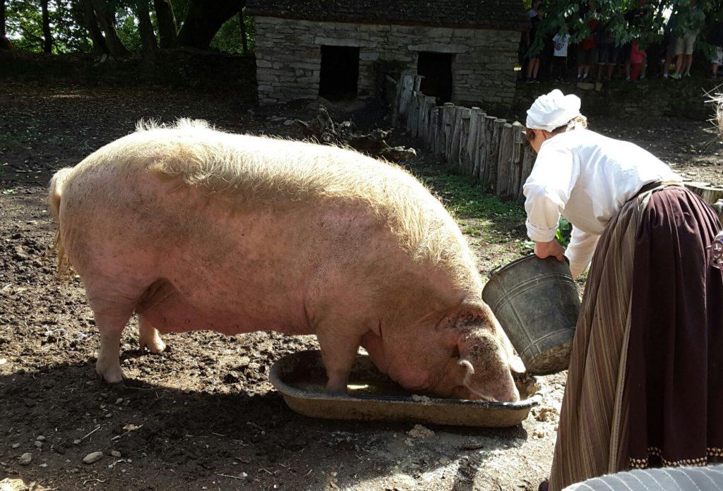 À la louche, 350 kg : une belle bête.